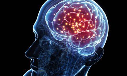 บำรุงสมอง กับอาหาร 6 ชนิด ที่คุณต้องลองให้ได้